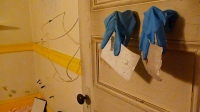 Door with Gloves opening unto Wall with Bands and Finger Polyps, 2010
